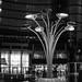 Milano in monochrom by Ref54