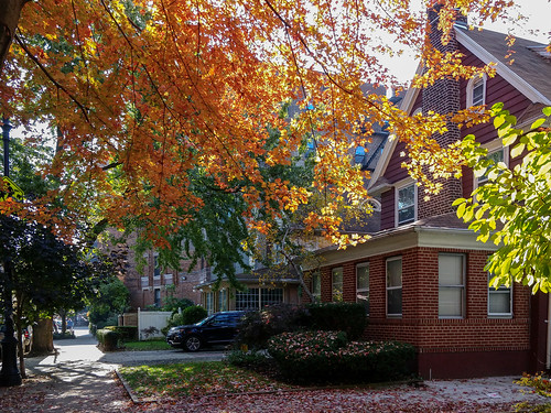 Fall in Ditmas Park. Brooklyn, New York