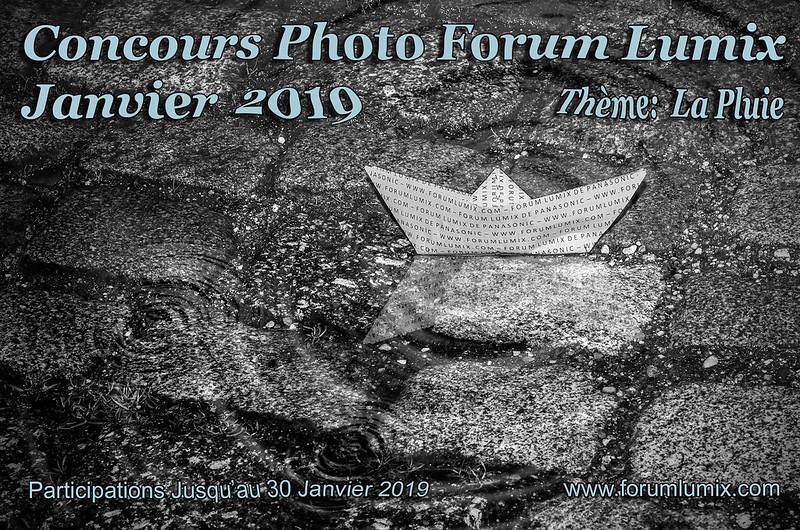 """Concours de janvier 2019 """"LA PLUIE"""" 46678644121_fbbf1b085a_c"""