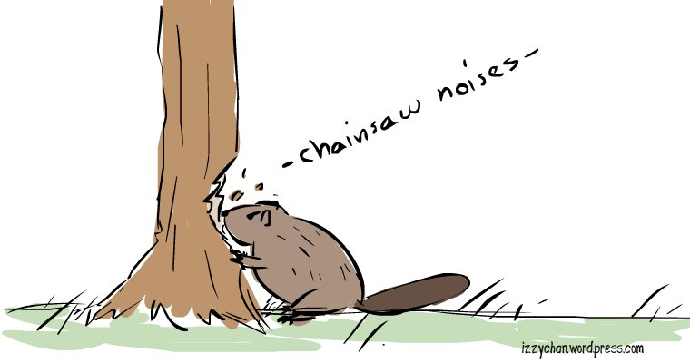 beaver chewing tree