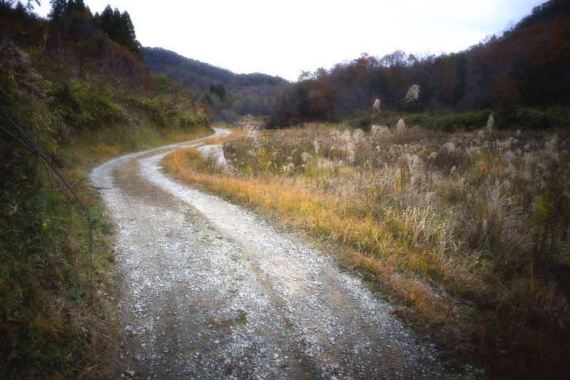 path #6