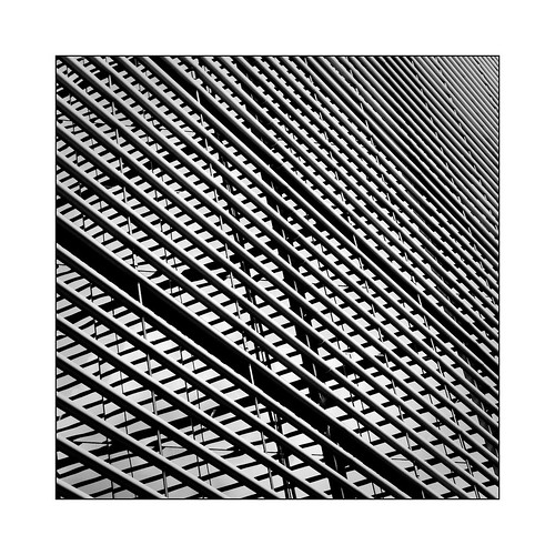 Lignes et reflets