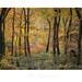 """Fearful Symmetree"" - Devochy's Nature Reserve by Joe Rainbow"