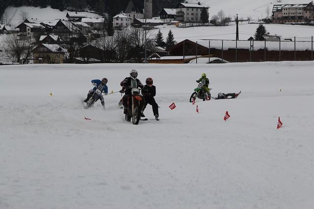2016 02 13 skijöring gosau 03