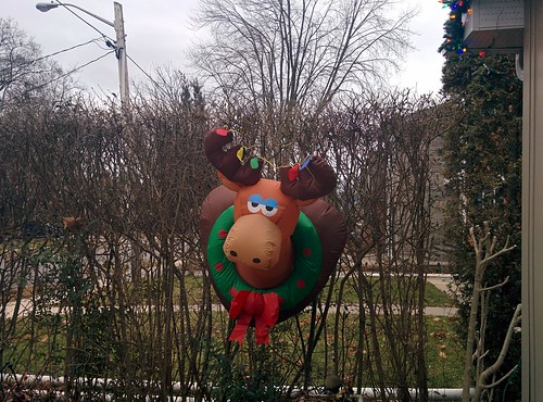 Chris and Adam's decorations (4) #toronto #etobicoke #longbranch #holidays #christmas #frontyard #latergram