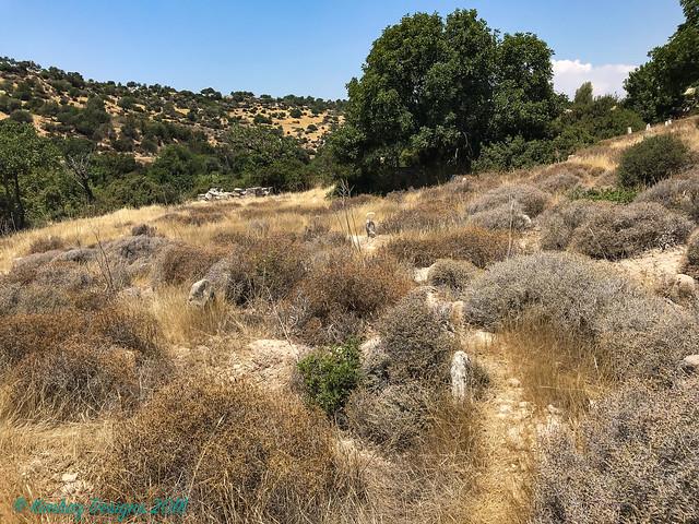 Cyprus 2018 - Abandoned, Apple iPhone, iPhone 7 back camera 3.99mm f/1.8