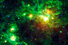 This image from NASA's Wide-field Infrared Survey Explorer highlights several star-forming regions. Original from NASA. Digitally enhanced by rawpixel.