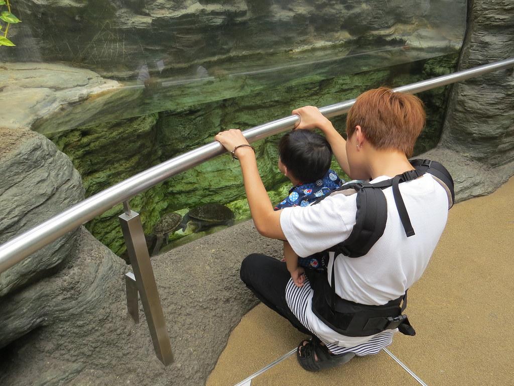 TOKYO ZOO上野動物園(兩光媽咪柳幼幼) (16)