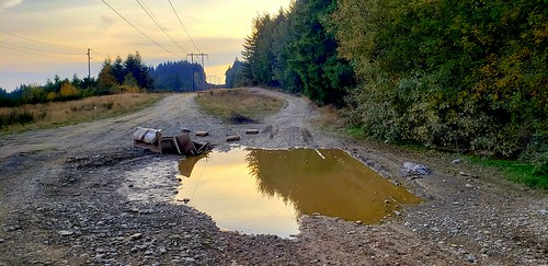 powerlineroad bremerton dumping trash sunset