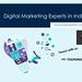 digital marketing experts in udaipur1