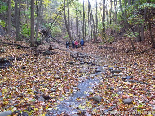 Hiking up the lower part of Barnes Creek Gully, near Canandaigua, New York