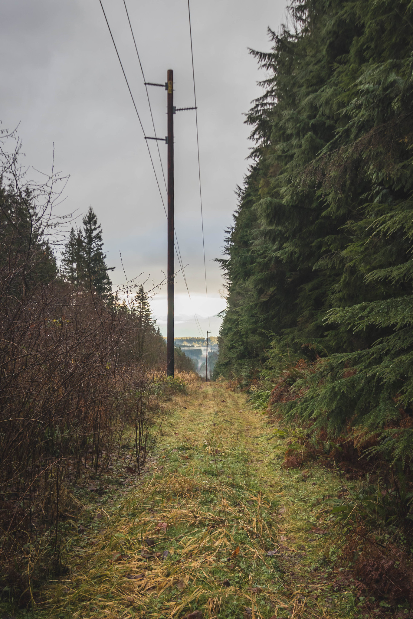 Preston Powerline Trail