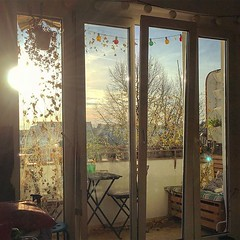 Morning winter sun