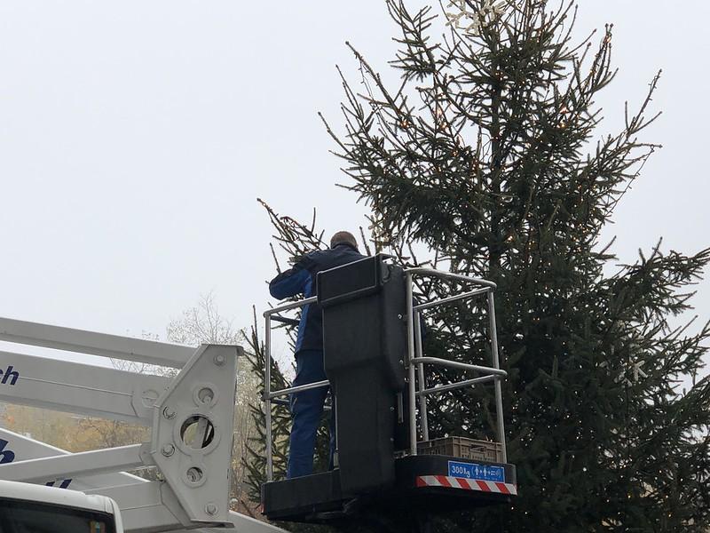 Christmas Tree Langendorf