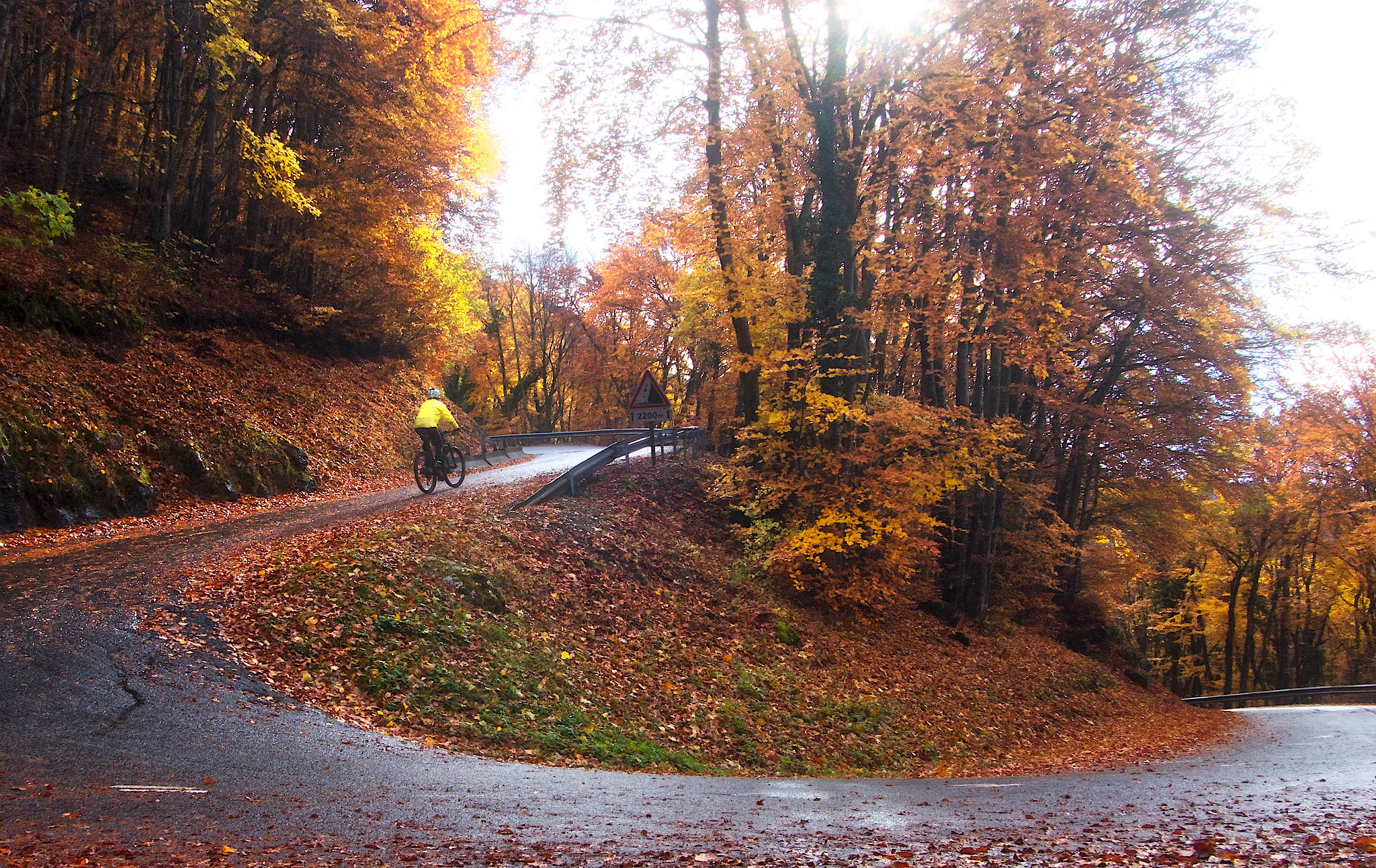 Autumn Hairpin