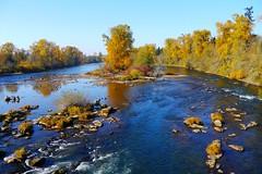 The Willamette River from the Frohnmeyer Pedestrian Bridge in Eugene, Oregon