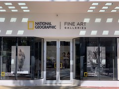 National Geographic Fine Art Studio Lincoln Road Mall
