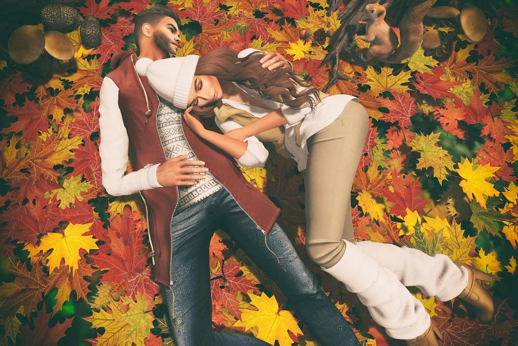 Autumn's Last Leaves