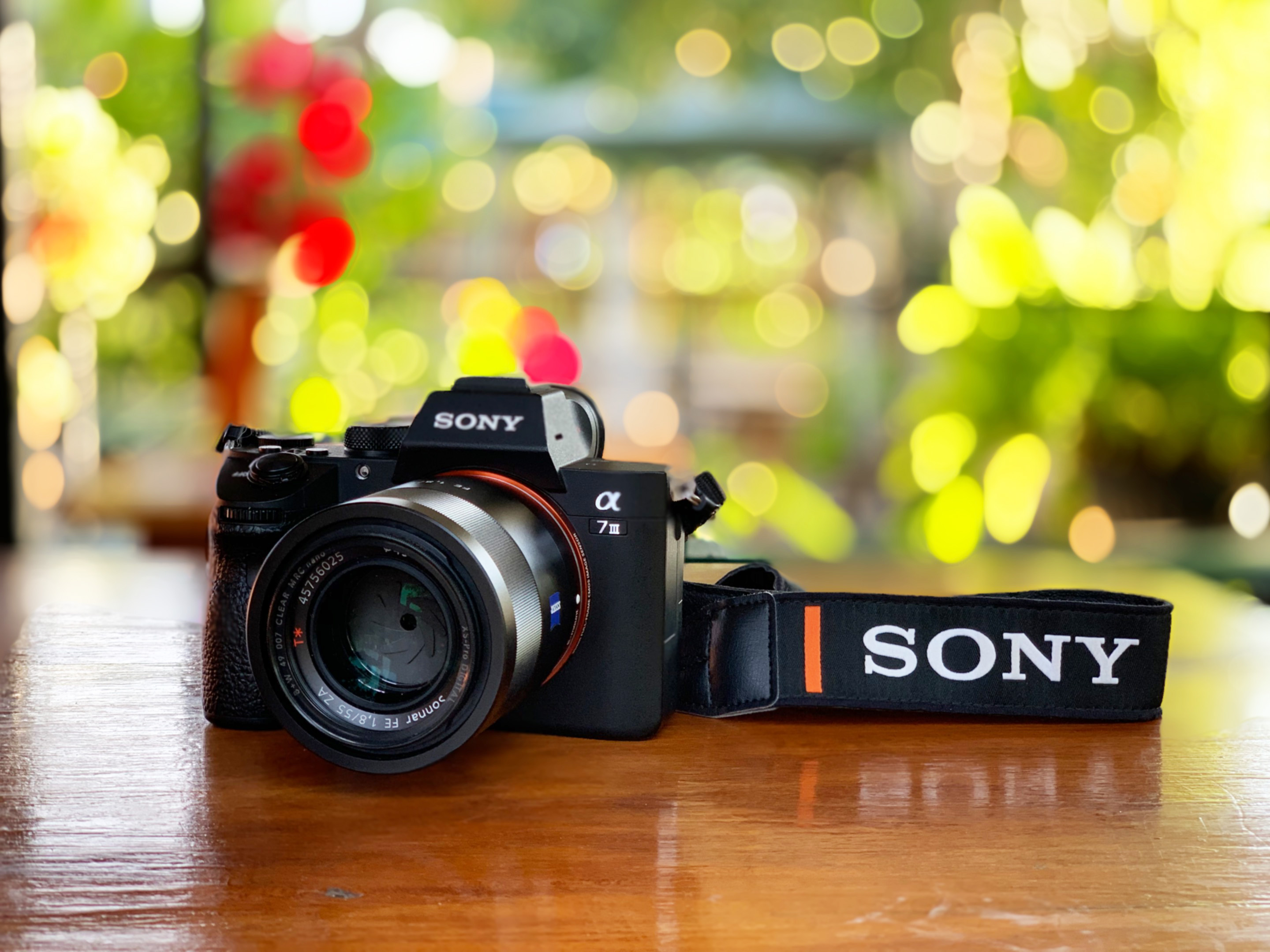 Sony-55mm-f18-ZA-review-35