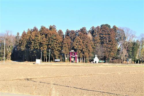 shimotsukehoshinomiya001