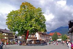 Garmisch - Altstadt (Fußgängerzone) (17) - Mohrenplatz mit »Lampionbaum«