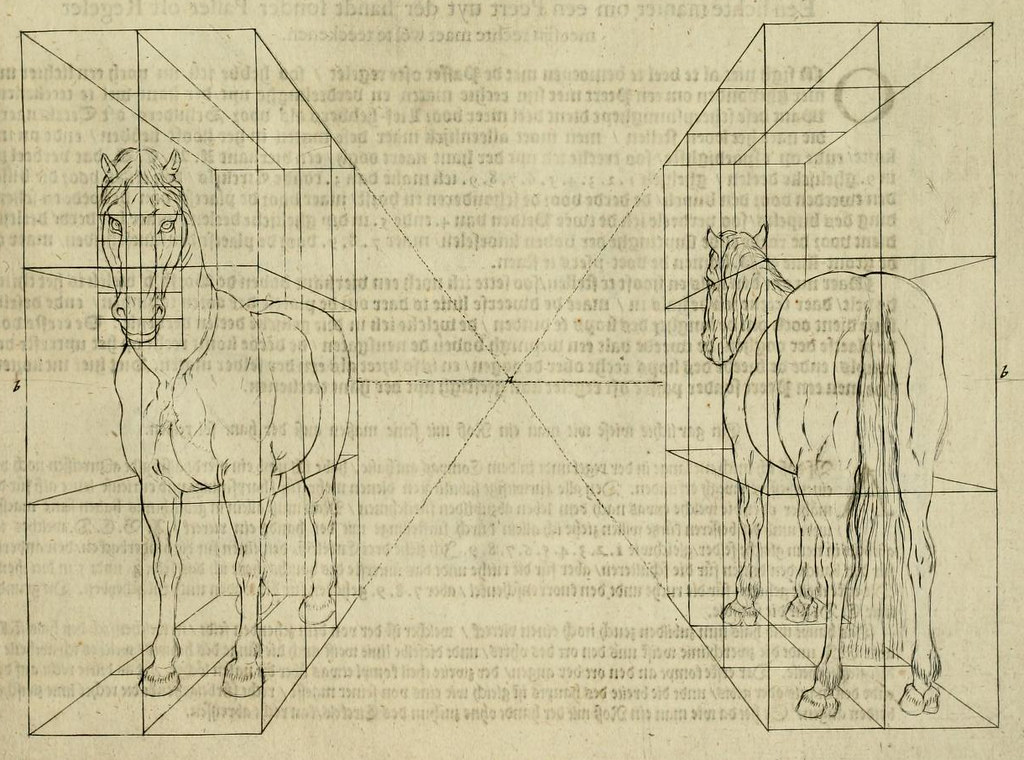 horse geometry how to draw