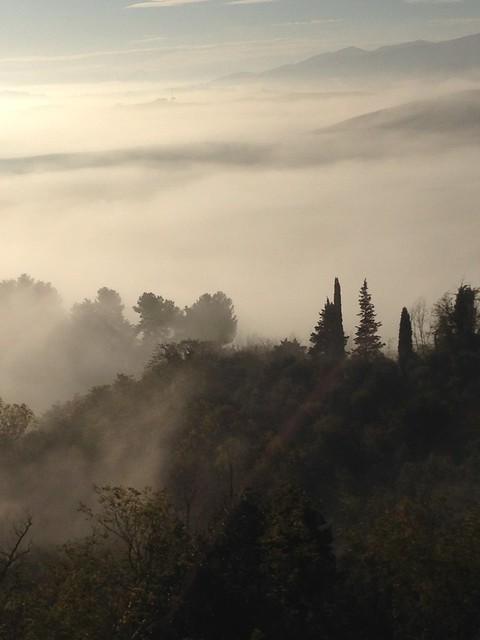 tucany hills in november7, Apple iPhone 5c, iPhone 5c back camera 4.12mm f/2.4