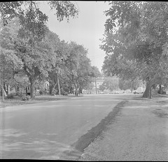 SMDR Photographic Negatives Collection, [Undated]