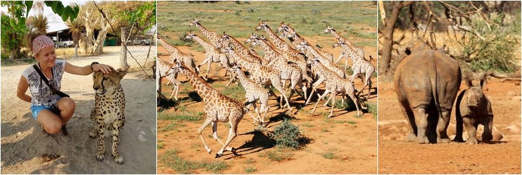 Erindi Namibia