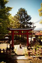 Frog Shrine