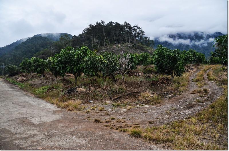 歐帕喀爾山土產道登山口