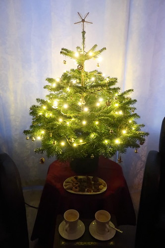 Unsere Weihnachtsplätzchen zum Kaffee unterm Weihnachtsbaum