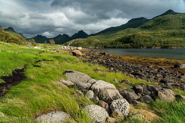Grass and stones at Olderfjorden (Norway)