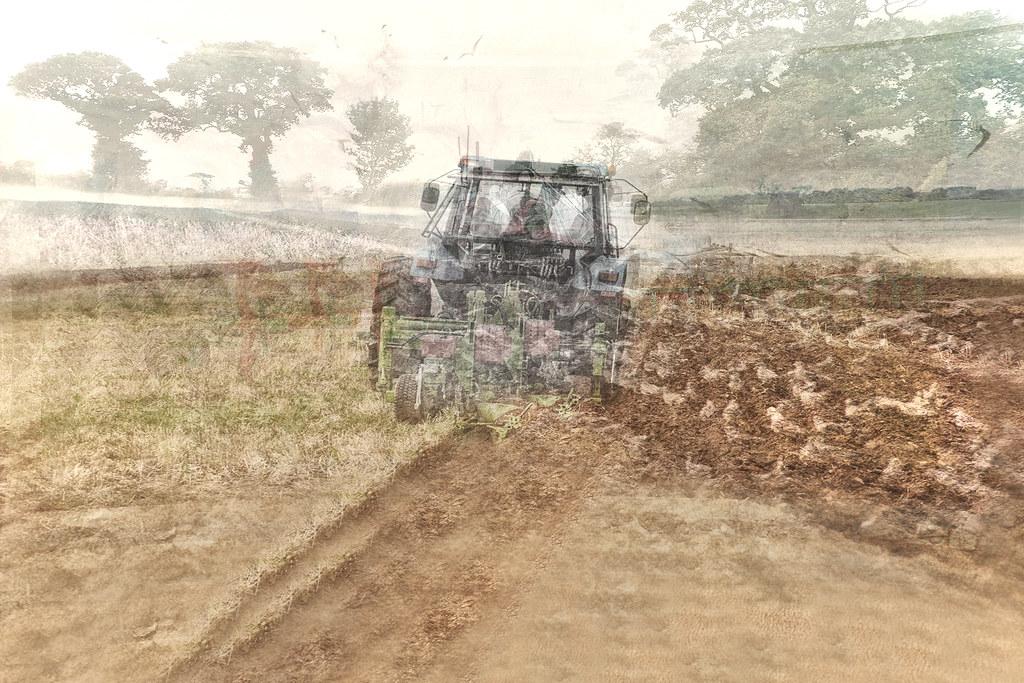 Plough Monday