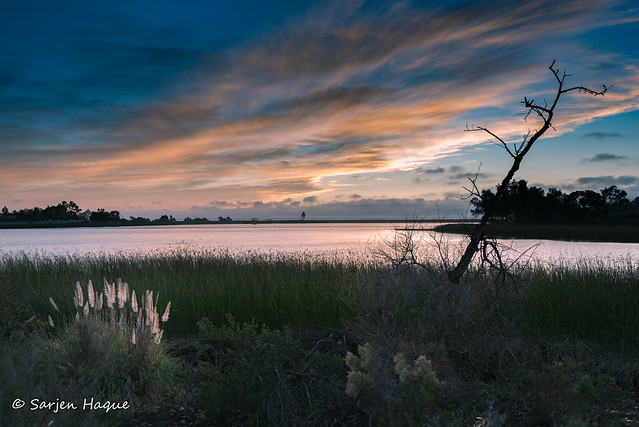 Miramar Lake, Nikon D750, AF-S Nikkor 16-35mm f/4G ED VR