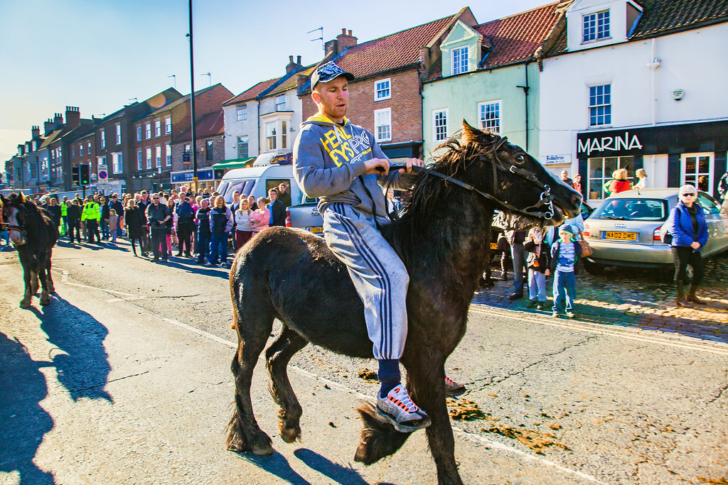 Gypsy Horse Race-4787