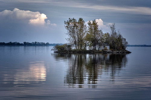 Terrell's Island