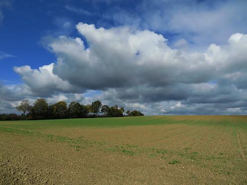 20171006 09 400 ostbay Wolken Herbst Feld Bäume