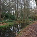 Bushy Park_Dec18_07