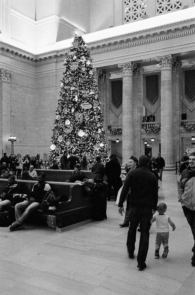 Christmas tree, Union Station, Chicago