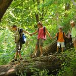 Tue, 05/12/2015 - 3:44pm - Kids in wilderness walking across log