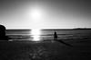 Photo:20181104 Sanin 12 By BONGURI