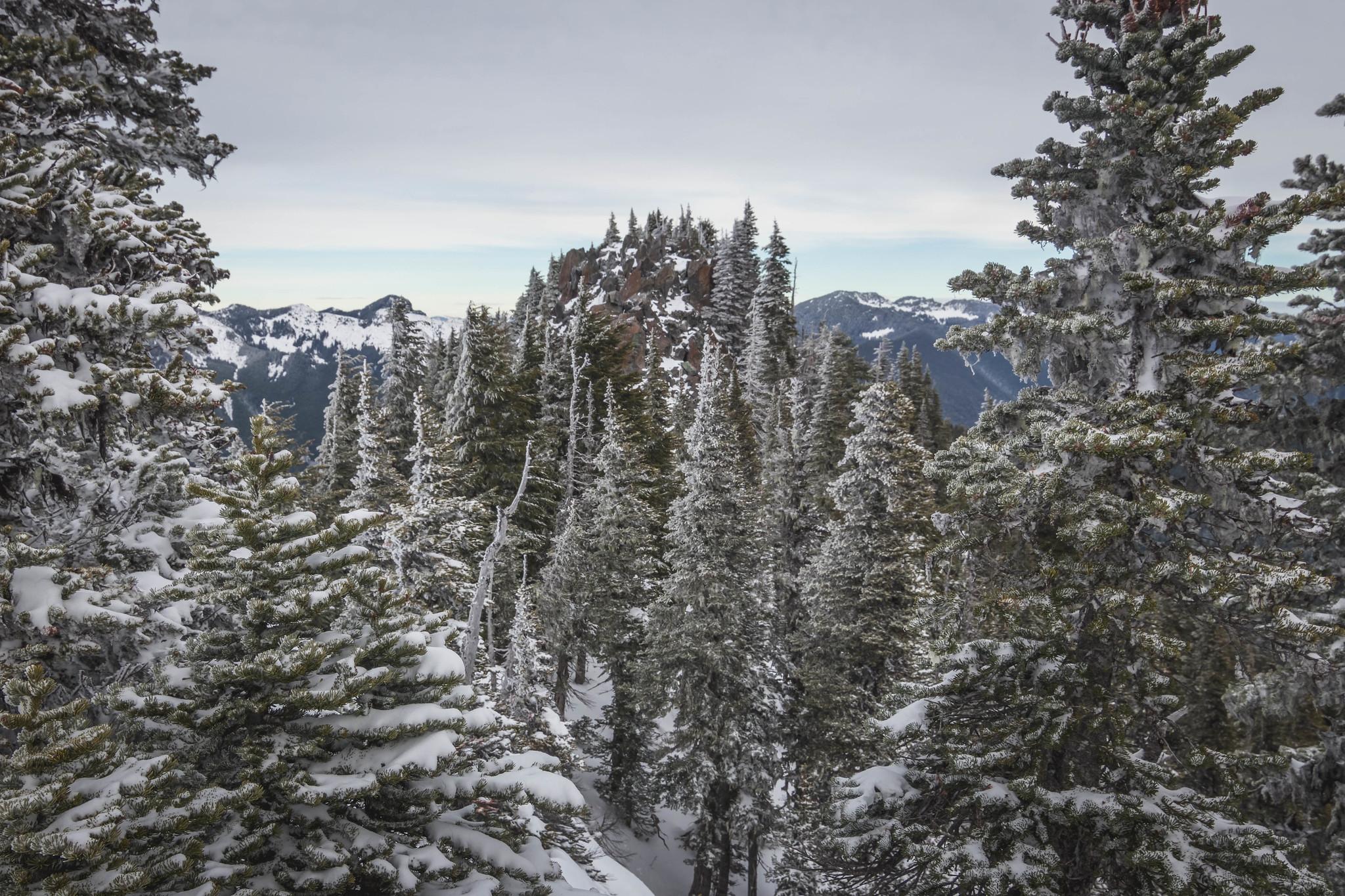 Florence Peak up ahead