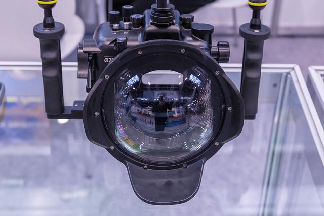 Nahaufnahme Unterwassergeh use f, Canon EOS 6D, Canon EF 24-70mm f/2.8L II USM