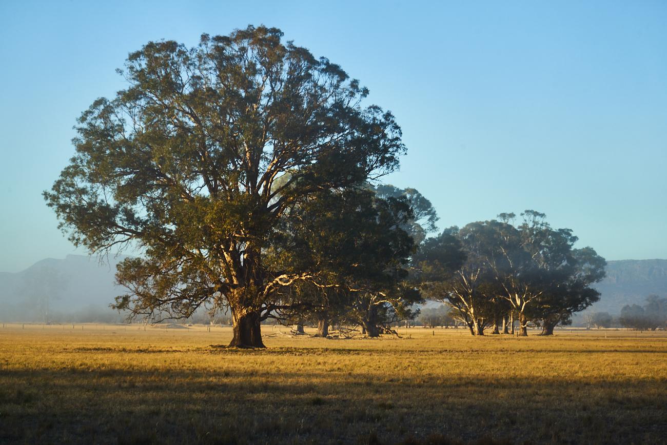 land near Melbourne