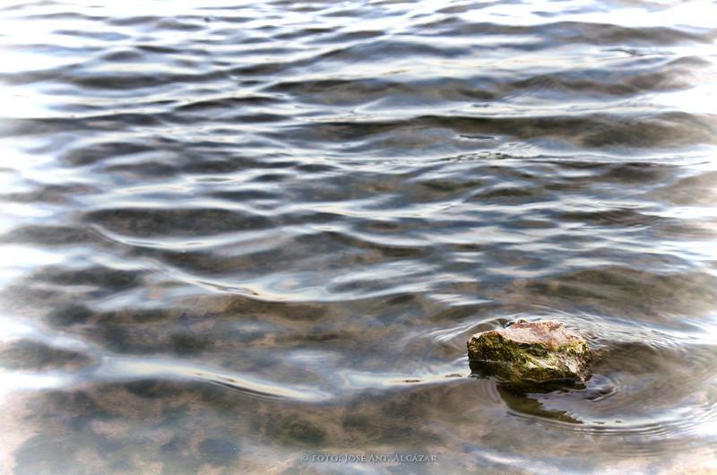 Una piedra en el agua transparente de una laguna.