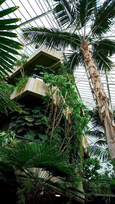 Barbican Conservatory, London, England