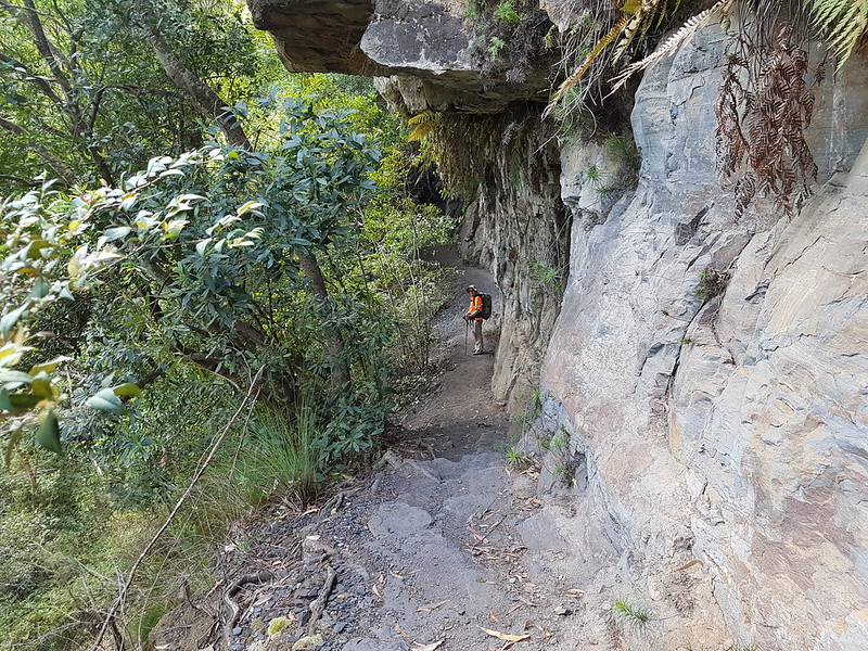 The Amphitheatre trail Morton National Park