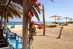 Sharm El Lole / Sharm-Elloli