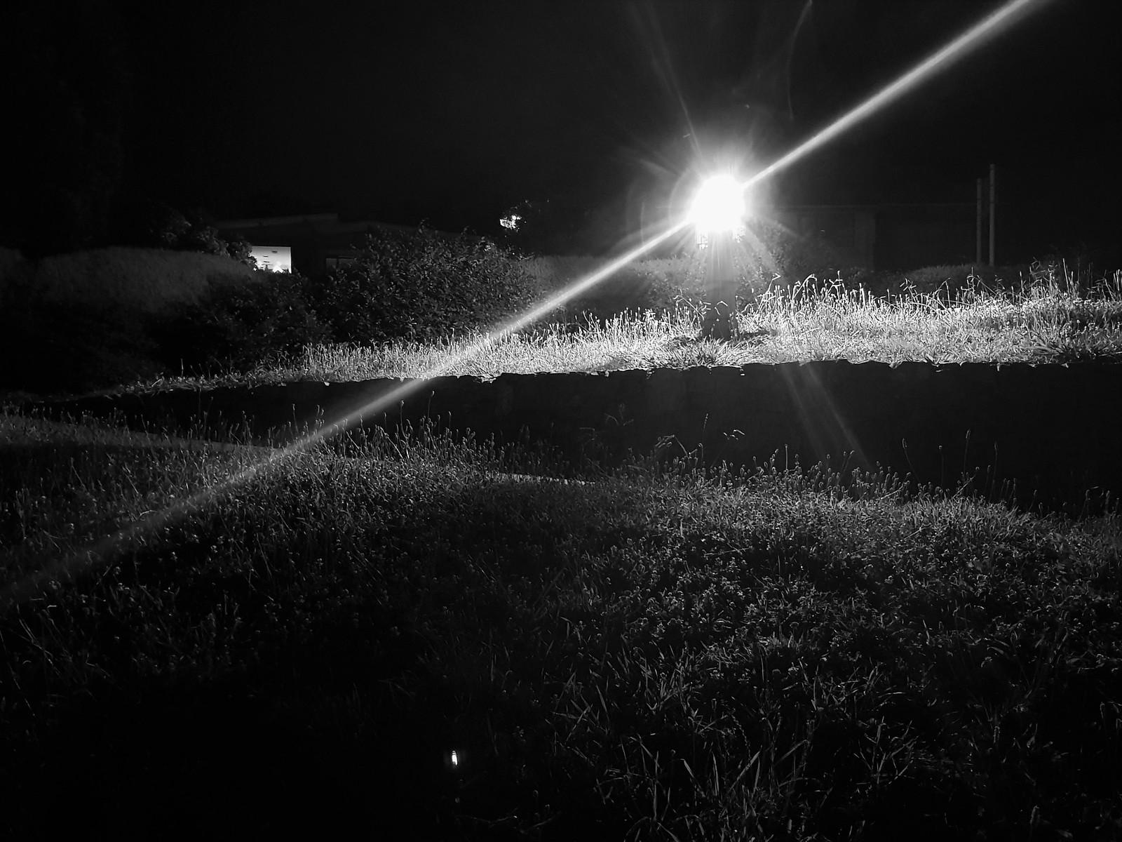 20190112_220903 (Guiding light)